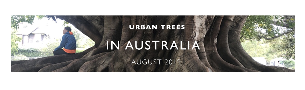 Urban Trees in Australia